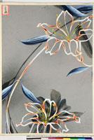 友禅図案(夏模様随意友禅図案集より) 20046004228| 写真素材・ストックフォト・画像・イラスト素材|アマナイメージズ