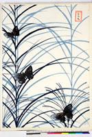 友禅図案(夏模様随意友禅図案集より) 20046004239| 写真素材・ストックフォト・画像・イラスト素材|アマナイメージズ