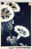 友禅図案(夏模様随意友禅図案集より) 20046004352| 写真素材・ストックフォト・画像・イラスト素材|アマナイメージズ