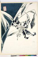 友禅図案(夏模様随意友禅図案集より) 20046004359| 写真素材・ストックフォト・画像・イラスト素材|アマナイメージズ
