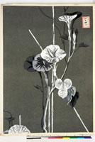 友禅図案(夏模様随意友禅図案集より) 20046004373| 写真素材・ストックフォト・画像・イラスト素材|アマナイメージズ
