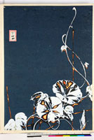 友禅図案(夏模様随意友禅図案集より) 20046004376| 写真素材・ストックフォト・画像・イラスト素材|アマナイメージズ