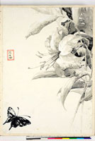 友禅図案(夏模様随意友禅図案集より) 20046004390| 写真素材・ストックフォト・画像・イラスト素材|アマナイメージズ