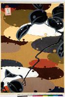 友禅図案 20046005186| 写真素材・ストックフォト・画像・イラスト素材|アマナイメージズ