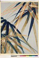 友禅図案(秋冬向模様友禅図案集より) 20046005422| 写真素材・ストックフォト・画像・イラスト素材|アマナイメージズ