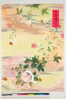 友禅図案 20046005549| 写真素材・ストックフォト・画像・イラスト素材|アマナイメージズ