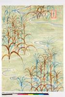 友禅図案 20046005596| 写真素材・ストックフォト・画像・イラスト素材|アマナイメージズ
