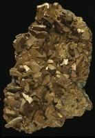 Arsenopyrite 20047000744| 写真素材・ストックフォト・画像・イラスト素材|アマナイメージズ
