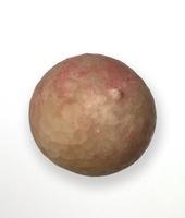 Crystal apple - cystoid echinoderm 20047001083  写真素材・ストックフォト・画像・イラスト素材 アマナイメージズ