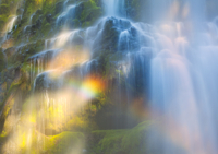Proxy Falls Rainbows