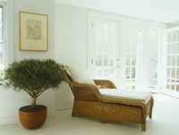 Wicker recamier next to potted tree in front of half-open te