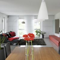Single red gerbera daisies in bottles on dining table below