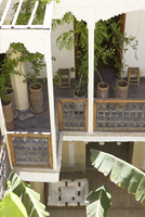 Potted trees on pergola balcony of Mediterranean house and v