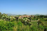 Padria. Sardinia. Italy