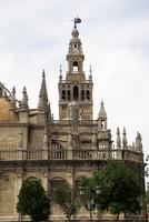 Catedral De Santa Maria De La Sede and Giralda. Seville. Spain
