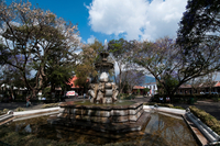 Parque Central. Antigua. Guatemala. 20053006416| 写真素材・ストックフォト・画像・イラスト素材|アマナイメージズ