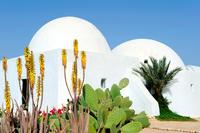 North Africa. Tunisia. Djerba Island. Mosque