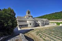 France. Provence. Gordes. Senanque Abbey
