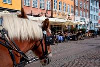Denmark. Copenhagen. Nyhavn Cafes And Restaurants