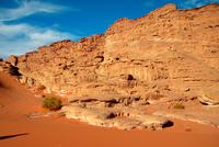 Arabian Desert. Saudi Arabia