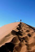 Dune 45. Namib Desert. Namibia