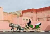 Morocco. Marrakech. Daily Life