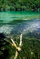Croatia. Plitvice Lakes National Park. World Heritage