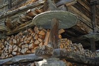 Detail of traditional wooden granary / raccard showing circular stone slab to prevent rodents from gaining access to the grain o
