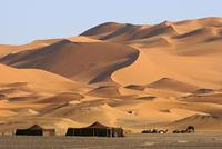 Bedouin tents and dromedary camels (Camelus dromedarius) among red sand dunes, Erg Chebbi, Sahara desert, Morocco, North Africa. 20053014926| 写真素材・ストックフォト・画像・イラスト素材|アマナイメージズ