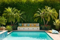 An outdoor pool in a suburban californian garden with palm t