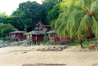 Bungalows On A White Sandy Beach Surrounded By Tropical Vege