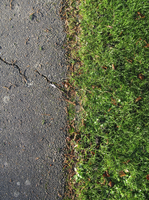 A Vertical Strip Of Old Pavement And Grass
