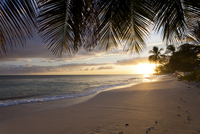 Sunset Over Beach With Palm Leaves
