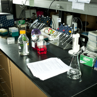 Beakers And Science Paraphernalia At Gatton Academy High Sch