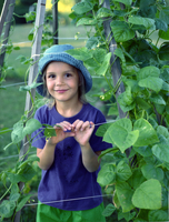 Young Girl In A Green Bean Vine Teepee Looking Happy In The