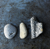 An Arrangement Of Stones, Pebbles, Rocks And Fossils On A Di