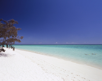 A Deserted White Sand Beach On Bright Blue Waters.