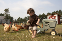 Young boy on the farm with chickens and tractor