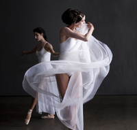 two ballerinas dancing next to each other wearing sheer skir