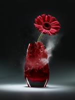 A vase explodes holding a gerber daisy 20055013364| 写真素材・ストックフォト・画像・イラスト素材|アマナイメージズ