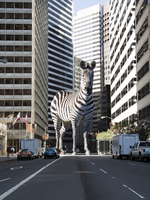 Giant zebra on city street 20055014672| 写真素材・ストックフォト・画像・イラスト素材|アマナイメージズ