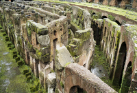 Ruins with moss