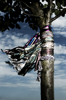 Scarfs hung on a tree
