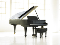 Steinway Piano 20055016668| 写真素材・ストックフォト・画像・イラスト素材|アマナイメージズ