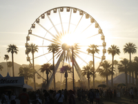 A Ferris wheel with palm trees in front of it. The sun is setting. A festival is taking place. 20055016685| 写真素材・ストックフォト・画像・イラスト素材|アマナイメージズ