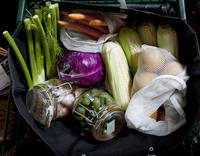 Grocery bag full of fresh vegetables  in jars