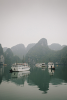 Boats taking tourists out into Halong Bay rest at anchor in the morning light. Halong Bay, Vietnam.