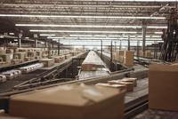 Boxes on conveyor belt at a sorting facility/distribution warehouse. 20055017267  写真素材・ストックフォト・画像・イラスト素材 アマナイメージズ