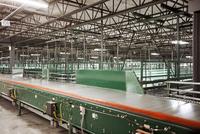 Conveyor belt at a sorting facility/distribution warehouse.