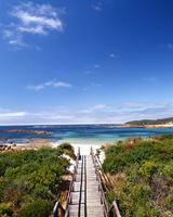 A wooden pathway leads out to a sandy beach and bright blue water